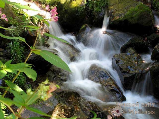 Уникальные свойства воды-источника жизни на Земле