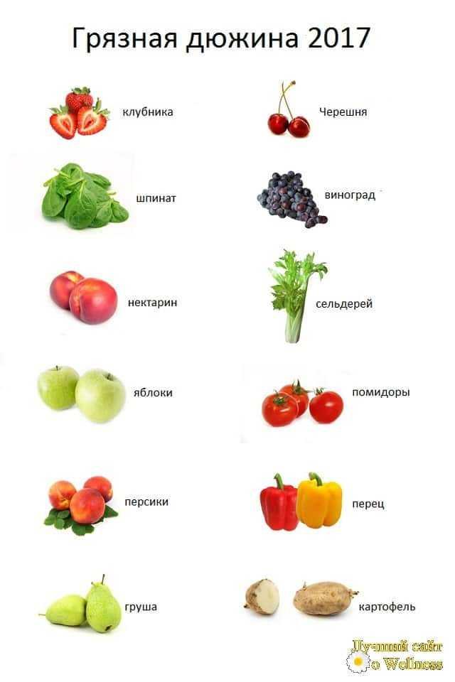 общие принципы здорового и правильного питания