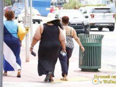 Проблема ожирения в современном мире нарастает — ученые