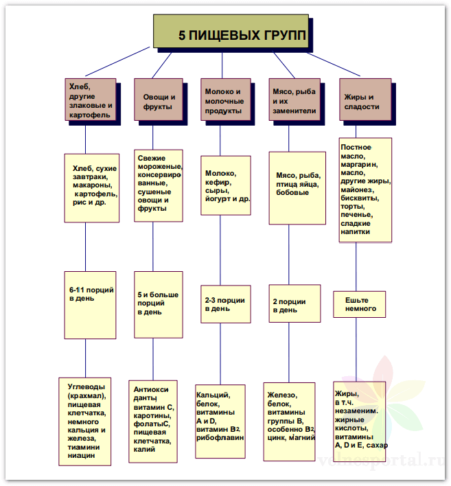 5 групп продуктов для здорового питания (рекомендации экспертов ВОЗ) фото