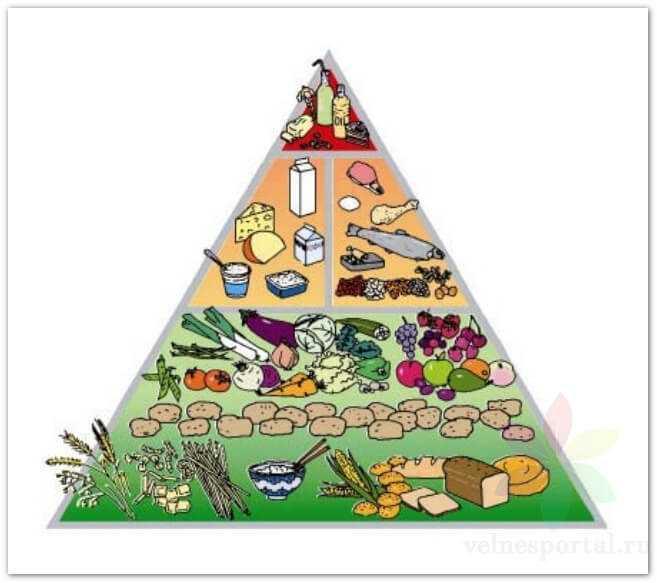 Пищевая пирамида СИНДИ